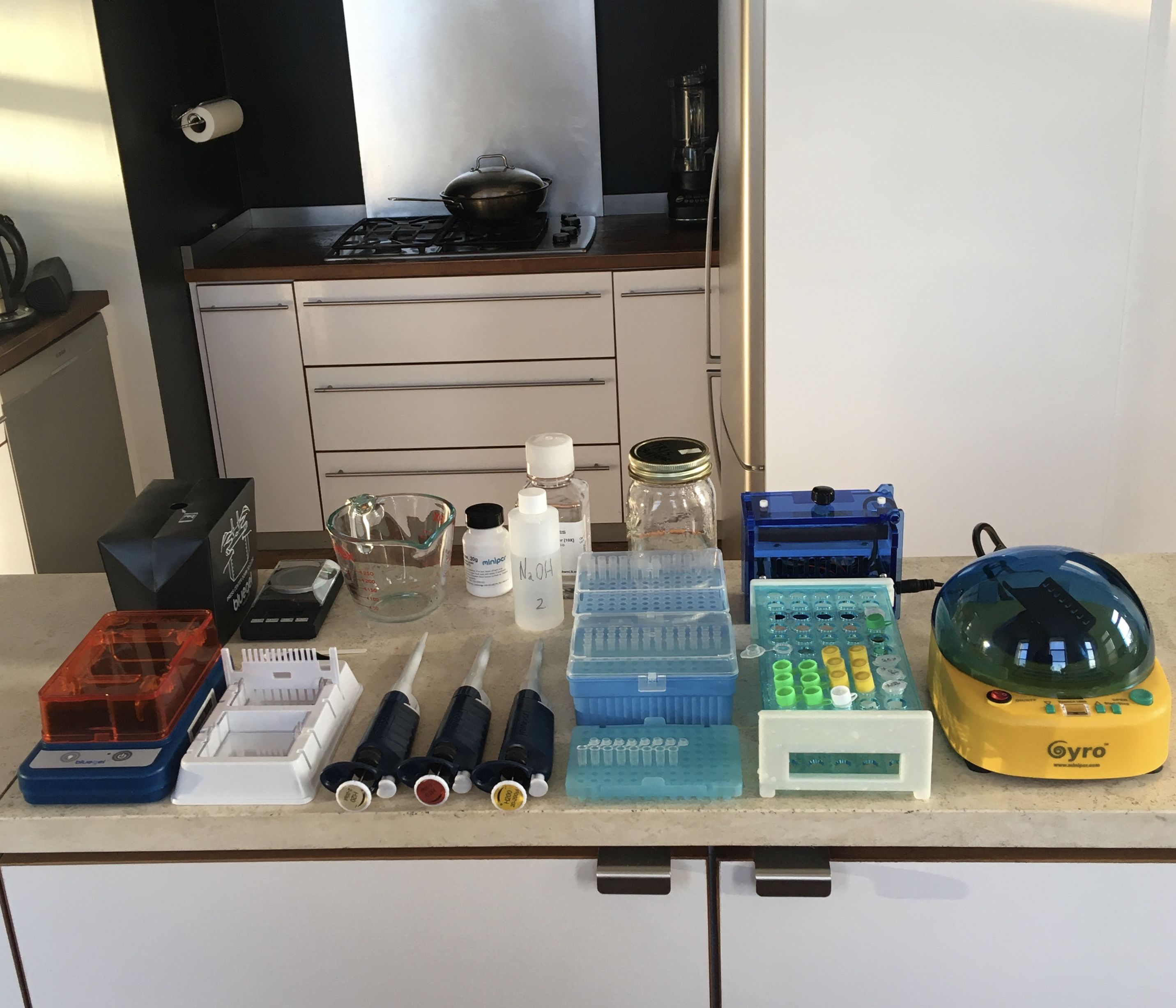 My PCR journey: how NAMP turned me into a kitchen scientist